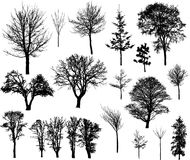 Winter trees. 20 beautiful winter tree silhouettes, highly detailed, young and old trees. Easy to change color; every tree is one object only stock illustration