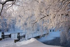 Winter trees and bridge Royalty Free Stock Images