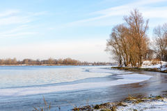 Winter Trees  Close to the Dnieper River Stock Photography