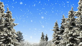 Winter. Trees and falling snow loop stock video footage
