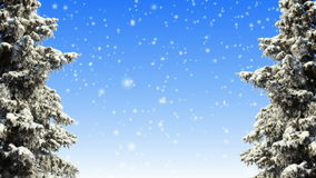 Winter. Trees and falling snow loop stock footage
