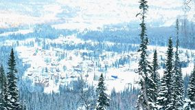 Winter trees in mountains covered with fresh snow in slowmotion. 1920x1080 stock footage