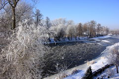 Winter, trees, outdoor, nature, river. Winter trees with ice and snow Royalty Free Stock Photography