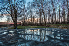 Winter Trees Reflecton. Bare trees are reflected in puddles in Kent, Washington stock images