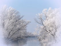 Winter trees and river Royalty Free Stock Images