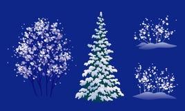 Winter trees set Royalty Free Stock Photos