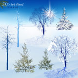 Winter trees set. Vector designers set of beautiful winter trees. Useful for making postcards, Christmas invitations, posters and other Xmas, New Year and winter Stock Photo