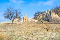 The winter trees. The sleeping trees among the winter landscape of Cappadocia, Turkey Stock Photography