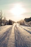 Winter and trees in snow Royalty Free Stock Images
