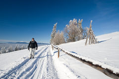 Winter trekking. In rural scenery during beautiful day Royalty Free Stock Image