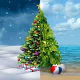 Winter and Tropical Christmas Royalty Free Stock Images