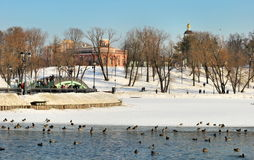 Winter in Tsaritsyno in Moscow Royalty Free Stock Photos