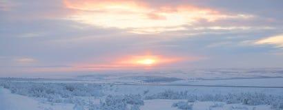 Winter tundra Royalty Free Stock Image
