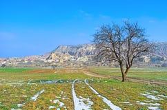 The winter in Turkey Stock Photo