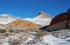 Winter at Turtle Head Peak in Red Rock Canyon, Nevada. Image shows Turtle Head Peak (upper, right center) in the Red Rock National Conservation Area after a Stock Image