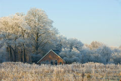 Winter in Twente Royalty Free Stock Photos