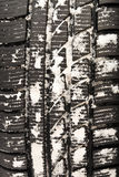 Winter tyre. Royalty Free Stock Photos