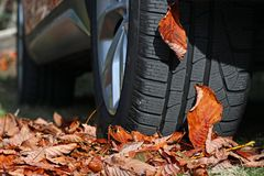 Free Winter Tyres For Wet Slippery Foliage Stock Photography - 161555552