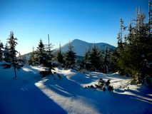 Winter Ukrainian Carpathians Stock Images