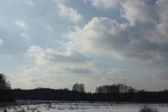 Winter und Bäume und Wolken Lizenzfreie Stockbilder