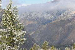Winter und Schnee in den altai Bergen von sibiria Lizenzfreies Stockfoto