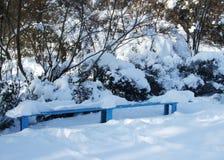 Winter und Schnee verzweigt sich unter der Eisenbank im Park Lizenzfreies Stockbild