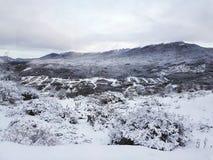 Winter und schneebedeckte Landschaft stockbilder