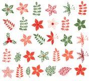 Winter- und Weihnachtsblumen, Blätter und Niederlassungen stock abbildung