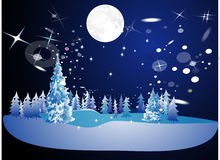 Winter under moon Stock Photos