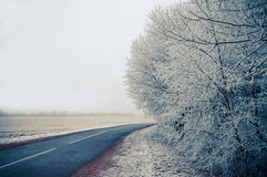 Winter. Unforgettable winter day, created by nature to perform miracles Stock Photos