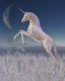 Winter Unicorn - rearing Royalty Free Stock Photos