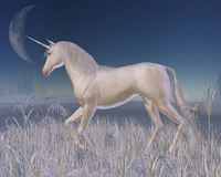 Winter Unicorn - running Stock Photo