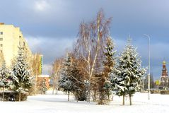 Winter urban landscape. Winter view. trees on street of city. Omsk.Russia Stock Photography