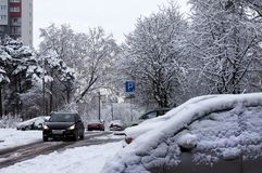 Winter urban scene. Snow on cars after snowfall Stock Photos