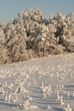 Winter vacation. Snow cover the village, frozen field and forest Stock Photos