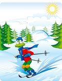 Winter vacation. Holiday skiing. Funny frog. Vector hand drawing Stock Photography