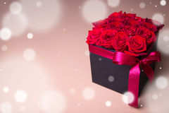 Winter and valentine& x27;s day concept - black box with beautiful re Stock Images