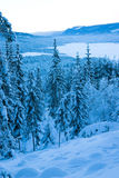 Winter Valley. Rural forested valley with everything covered by snow and frost. Norway, December Royalty Free Stock Photo