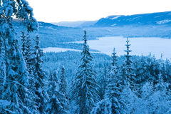 Winter Valley. Rural forested valley with everything covered by snow and frost. Norway, December Royalty Free Stock Image