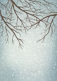 Winter Vector Tree Branches Stock Image