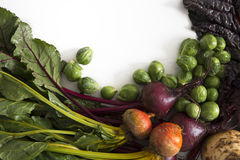 Winter Vegetables with Copy Space Stock Image