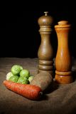 Winter Vegetables With Salt and Pepper Royalty Free Stock Photos