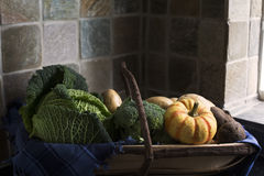 Winter Vegetables in Trug Stock Image