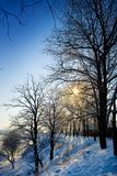 Winter view stock image