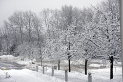 Winter view Royalty Free Stock Image