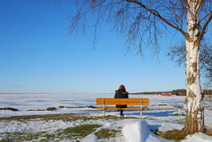 Winter view. Woman sitting on a bench watching ice and a bridge in a nordic winter landscape Stock Image