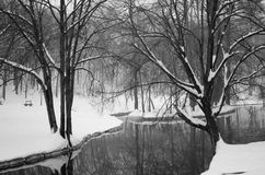 Winter view. View from Romanescu park in Craiova, Romania... Picture taken around february 2014 Stock Photo