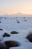 Winter view of Ararat mountain. Stones in snow and footprints taking to the Mount of Ararat Stock Image