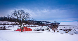 Winter view of barns and a tree on a farm in rural York County, Stock Photo