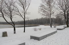 Winter view of  coast Lake of Pogoria Royalty Free Stock Photography